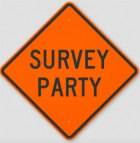 Surveyparty