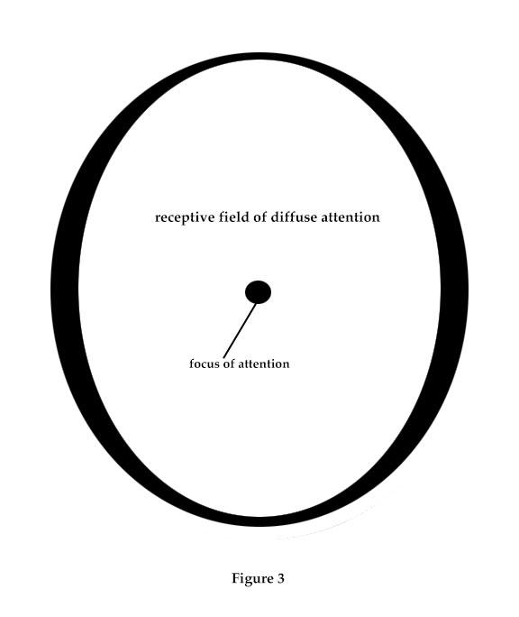 AttentionExercise