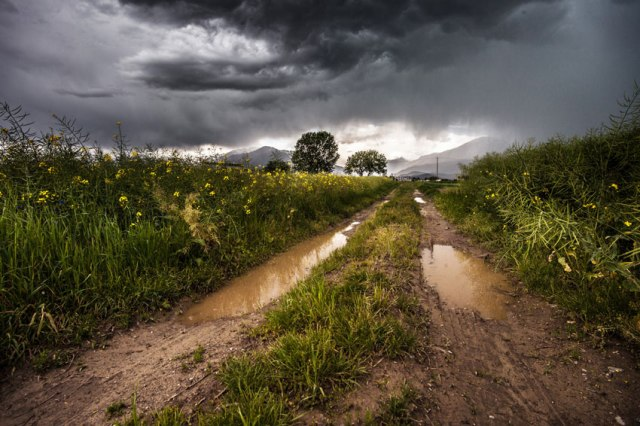 country-lane-field-meadow-rain